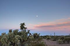 Moonset all'alba Fotografia Stock