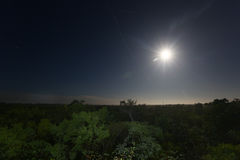 Moonset alla selva Fotografie Stock