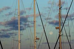 Moonset over zeilboten in Brunswick, Georgië stock afbeeldingen