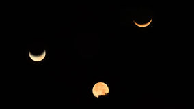 moonset tre på buddhismpagodtemplet Arkivbild
