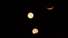 moonset tre på buddhismpagodtemplet Royaltyfria Foton