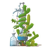 Moonshine from cactus, image in cartoon style Royalty Free Stock Image