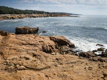 Moonstone Beach Stock Images
