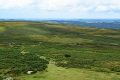 Moor landscape Royalty Free Stock Photos