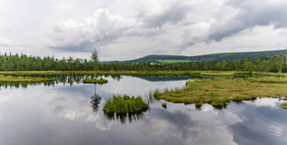 Moor marsh lake meadow forest sky Royalty Free Stock Photo