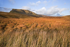 Moor and marsh land in front of Pen-y-Ghent in Yorskshire Dales Stock Photo
