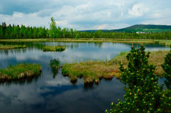 Moor in mountains. With cloudy sky stock images