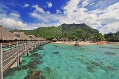 Moorea海岛盐水湖在塔希提岛,法属波利尼西亚 免版税库存照片