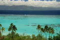 Moorea盐水湖和塔希提岛。法属玻里尼西亚 免版税图库摄影