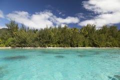 Moorea ö och lagun - franska Polynesien Arkivfoton