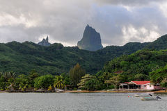 Moorea Cove Stock Image