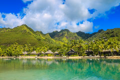 Moorea, francese Polynesi Fotografia Stock