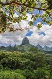 Moorea francuski Polynesia Fotografia Royalty Free