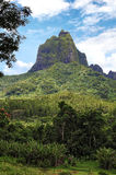 Moorea francuski Polynesia Zdjęcie Royalty Free