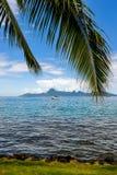Moorea.French波里尼西亚海岛  免版税库存图片