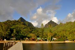 Moorea, french polynesia Royalty Free Stock Photo