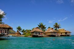 Moorea, french polynesia Royalty Free Stock Image