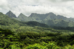 Moorea Island in French Polynesia Royalty Free Stock Image
