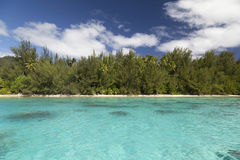 Moorea Island and Lagoon - French Polynesia Stock Photos