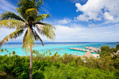 Moorea island landscape Royalty Free Stock Images