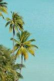 Moorea strand Arkivbilder