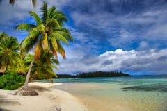 Moorea wyspa, Tahiti, Francuski Polynesia blisko do bor, Zdjęcia Stock