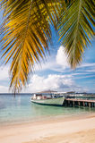 Moored boat at the tropical beach. With palm leaves Royalty Free Stock Photography