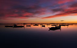 Moored Boats Royalty Free Stock Image