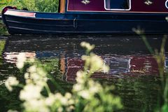 Moored canal boat in a river in Scotland, United Kingdom with so. Me flowers in the foreground Stock Photography
