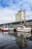 Moored fishingboats Trondheim Stock Photography
