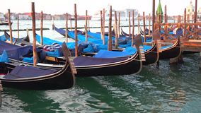 Moored gondolas in close-up. Morning Venice stock footage
