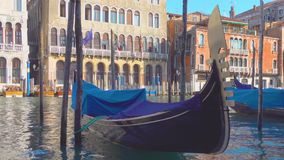Gondolas on The Grand Canal in Venice stock video footage