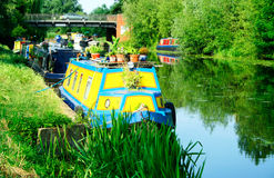 Moored narrowboats. Narrowboats on the river Cam, England, near Waterbeach. It's a still day in July, a river flow is lazy. A narrowboat is boat specially Royalty Free Stock Image
