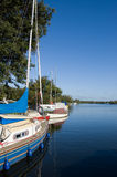 Moored sailing yachts. Moored on a calm lake royalty free stock image