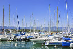 Moored yachts in a harbor at Geneva, Switzerland. GENEVA – JULY 25, 2011. Yachts in a harbor at Geneva on July 25, 2011. Yacht racing is a popular sport royalty free stock image