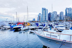 Moored yachts and marina at Coal Harbour in Vancouver, Canada Royalty Free Stock Photos