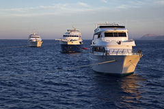 The moored yachts. Yachts moored at a reef Royalty Free Stock Image
