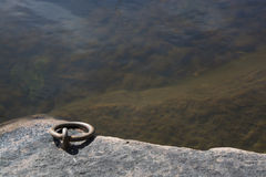 Mooring link by lake Stock Image