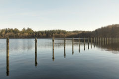 Mooring Poles in a lake Stock Image