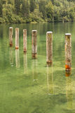 Mooring poles at St Bartholoma pier. Konigssee. Germany Stock Images