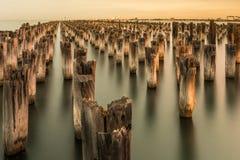 Mooring poles at sunset at Princes Pier Stock Photos