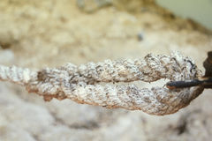 Mooring rope with knots in vintage style Royalty Free Stock Photography