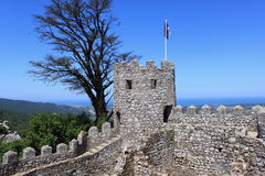 Moorish castle. In Sintra, Portugal stock images