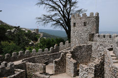 Moorish castle in Sintra Royalty Free Stock Photo