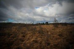moorland fotografia stock libera da diritti