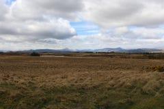 moorland royaltyfri bild