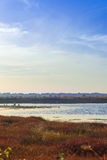 The moorland in the autumn Royalty Free Stock Image