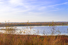 The moorland in autumn Stock Photo