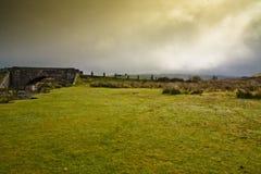 Moorland che coltiva sul dartmoor Devon Immagine Stock Libera da Diritti
