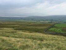 Moorland herbeux Photo libre de droits